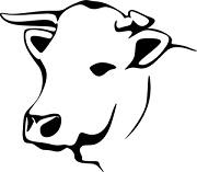 tete de vache